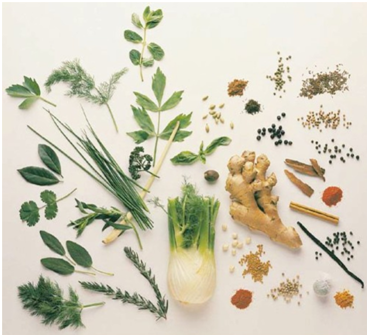 3 Basic Must-Have Herbs in Your Daily Diet